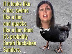Professional liar for Tantrum Trump:Sarah Huckabee Sanders.. -