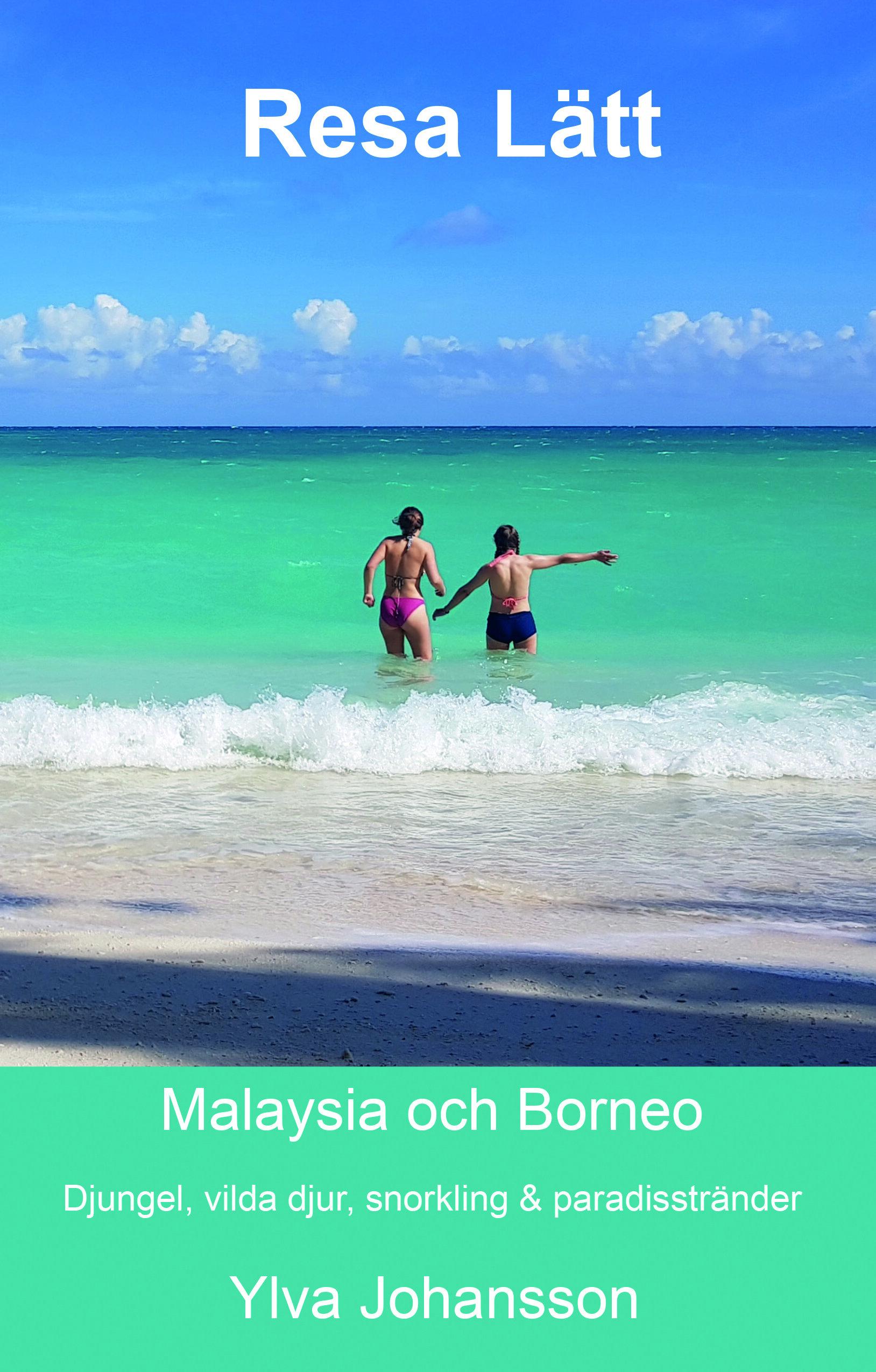 - Hur packar du bäst för en resa till Borneo för att komma nära orangutanger, näsapor, krokodiler, näshornsfåglar, havssköldpaddor och clownfiskar? Och hur hamnar man i kristallklara turkosa paradis på en rimlig budget? Här hittar du det mesta du behöver veta för att göra en resa du knappt vågade drömma om!