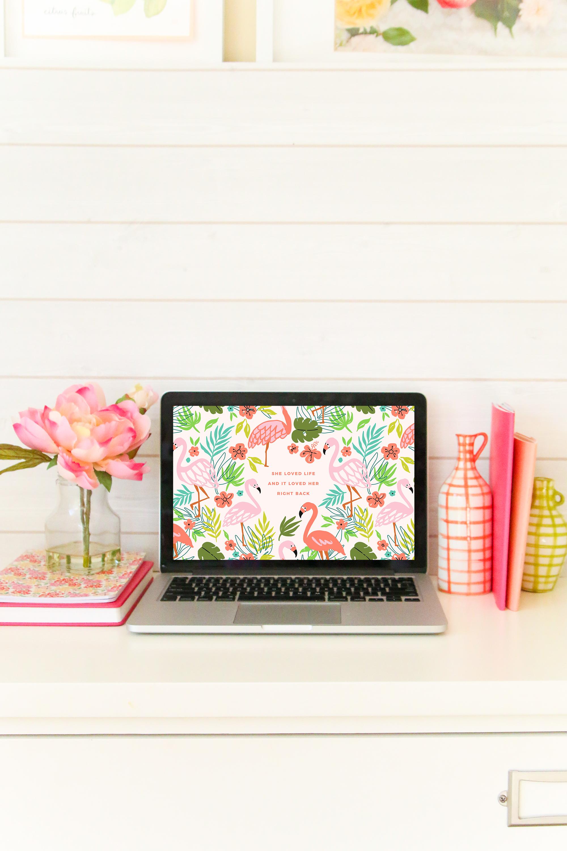 she-loved-life-flamingo-desktop-wallpaper.png