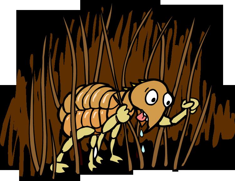 flea.png