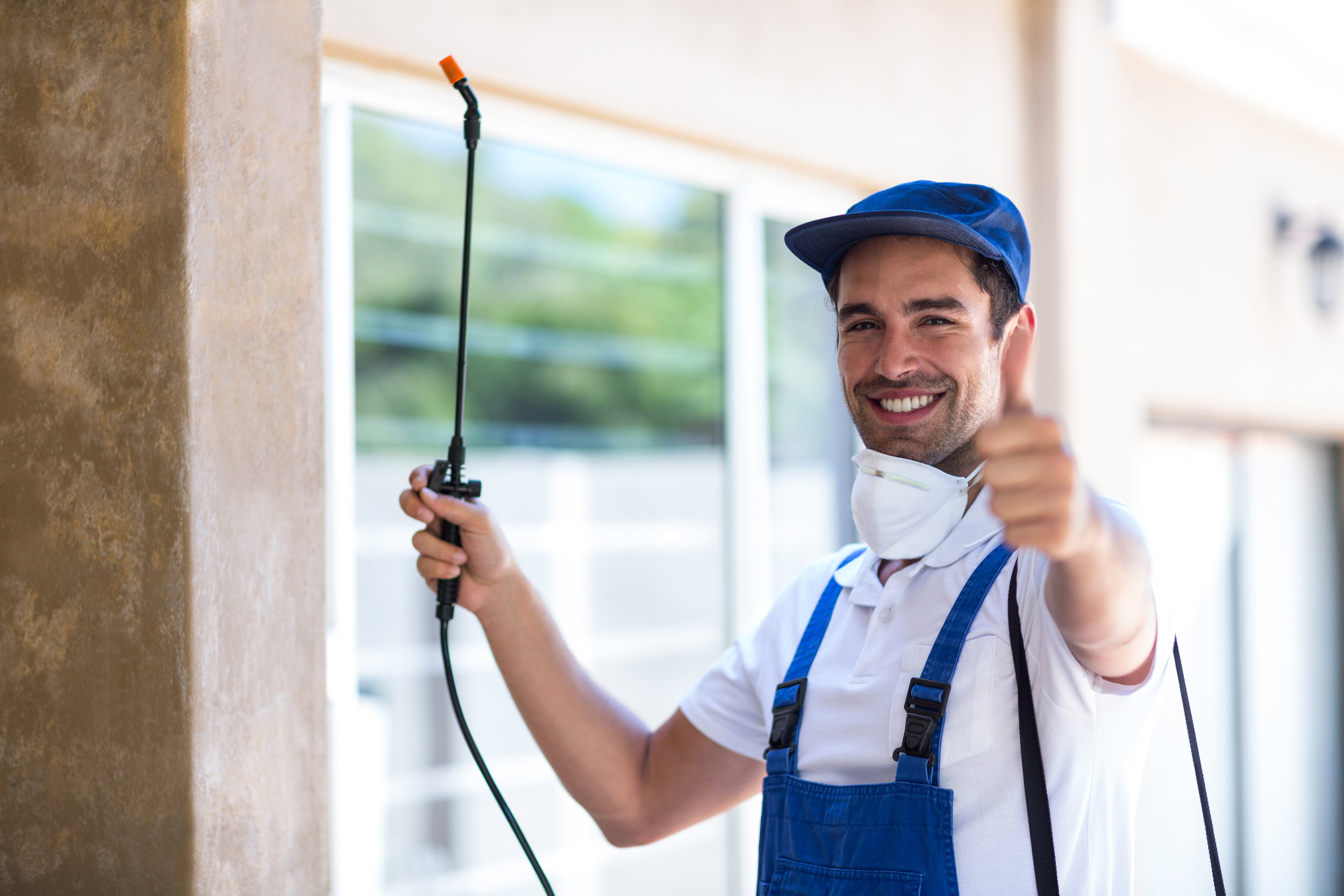Take Back Your Home! - Professional Pest Control That's Effective & Affordable