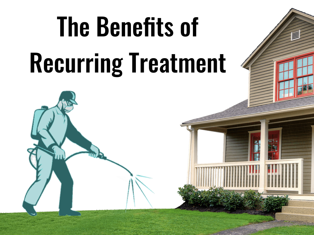 - You may be wondering why a recurring pest control service is necessary when a one-time treatment can just be purchased whenever an infestation becomes present. In Southern California especially, the dry climate combined with the heat ensures that pests are present year round. Here are the benefits to signing up for recurring services.