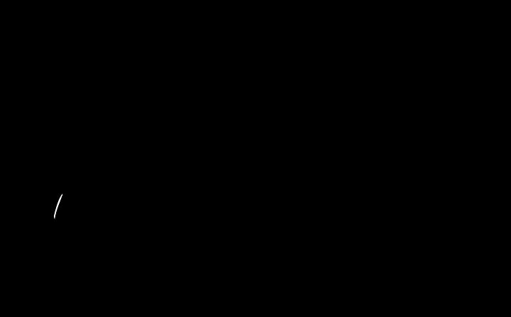 2015 SDFF Logo Transparent.png