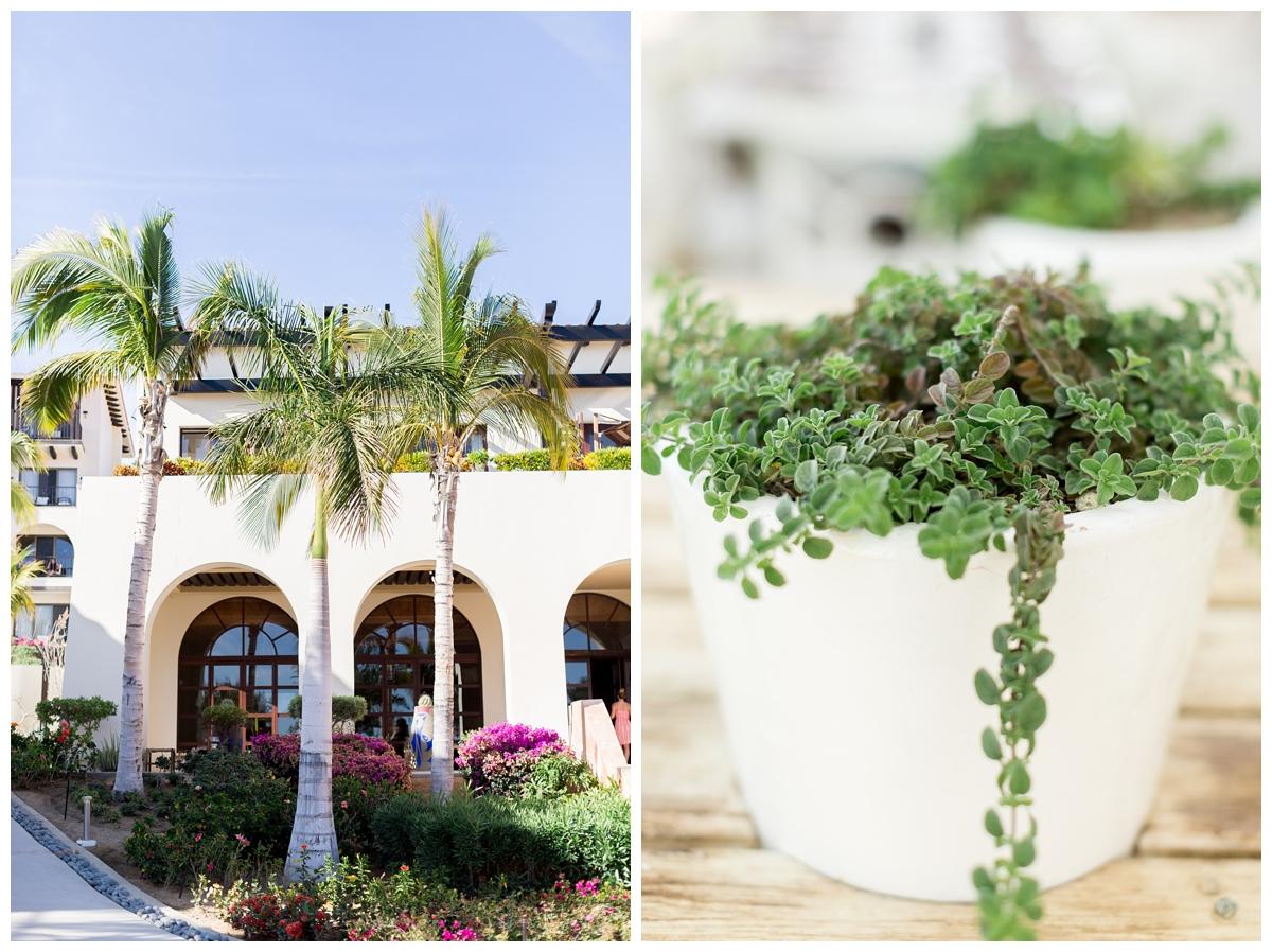 Secrets-Puerto-Los-Cabos-Resort-Wedding-Photos_4953.jpg