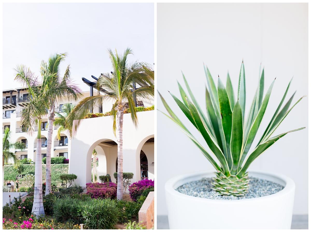 Secrets-Puerto-Los-Cabos-Resort-Wedding-Photos_4927.jpg