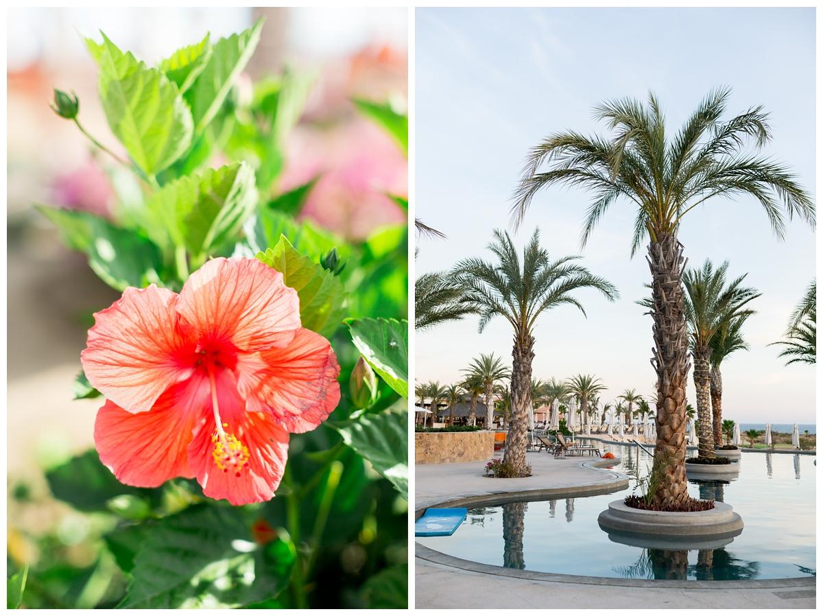 Secrets-Puerto-Los-Cabos-Resort-Wedding-Photos_4928.jpg