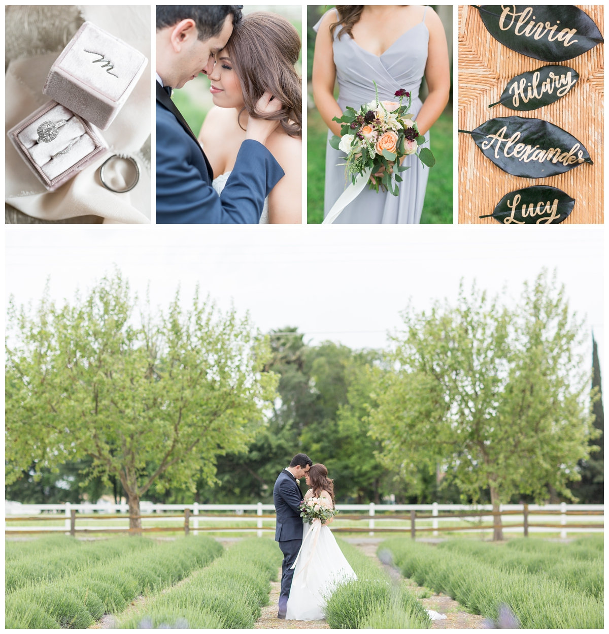 Pageo-Lavender-Farms-Wedding-Photos_4789-1.jpg