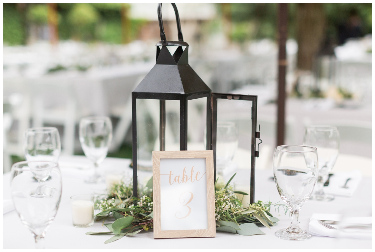 Pageo-Lavender-Farms-Wedding-Photos_4732.jpg
