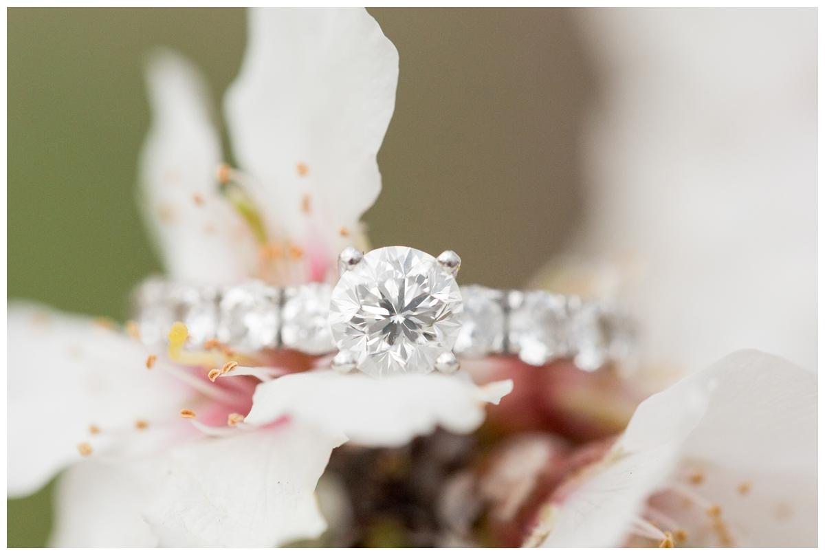 Chico-Almond-Blossom-Engagement-Photo-Session_4163.jpg