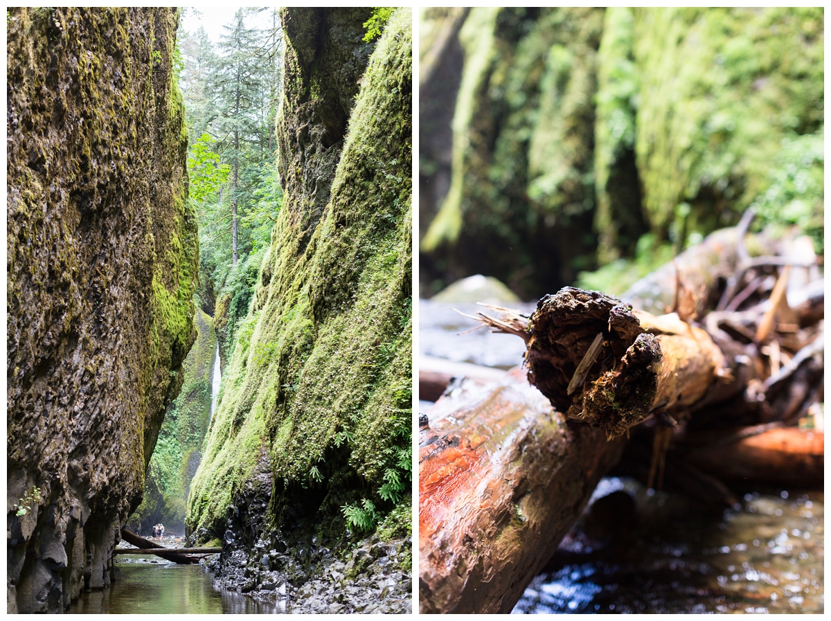 Oneonta-Gorge-Elopement-Photographer-Destination-Wedding_0617.jpg