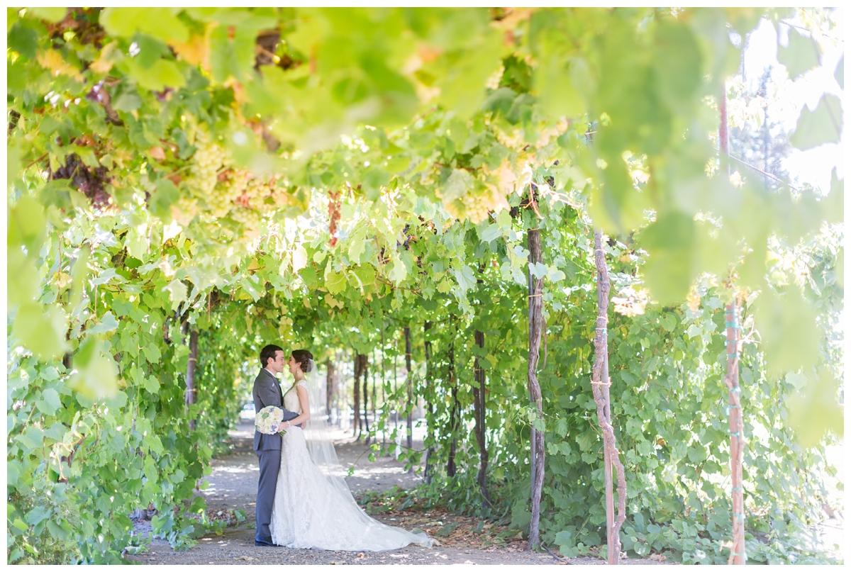 Trentadue-Winery-Wedding-Photographer-Santa-Rosa_2271.jpg
