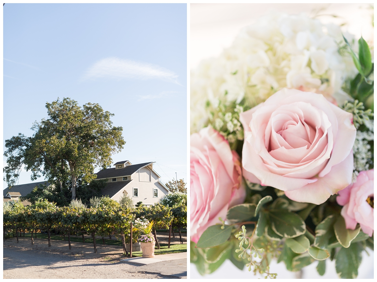 Scribner-Bend-Vineyards-Wedding-Photos-Sacramento-Wedding-Photographer-_2497.jpg