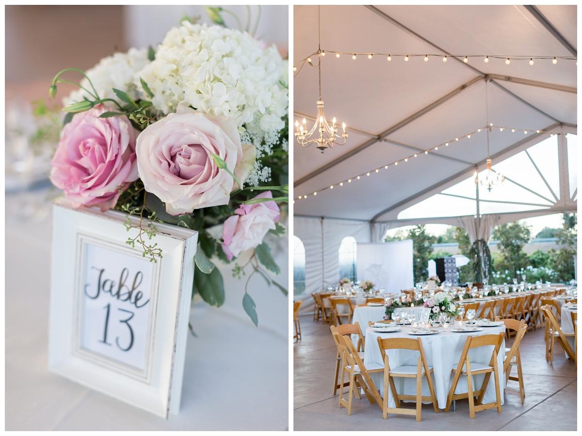 Scribner-Bend-Vineyards-Wedding-Photos-Sacramento-Wedding-Photographer-_2510.jpg