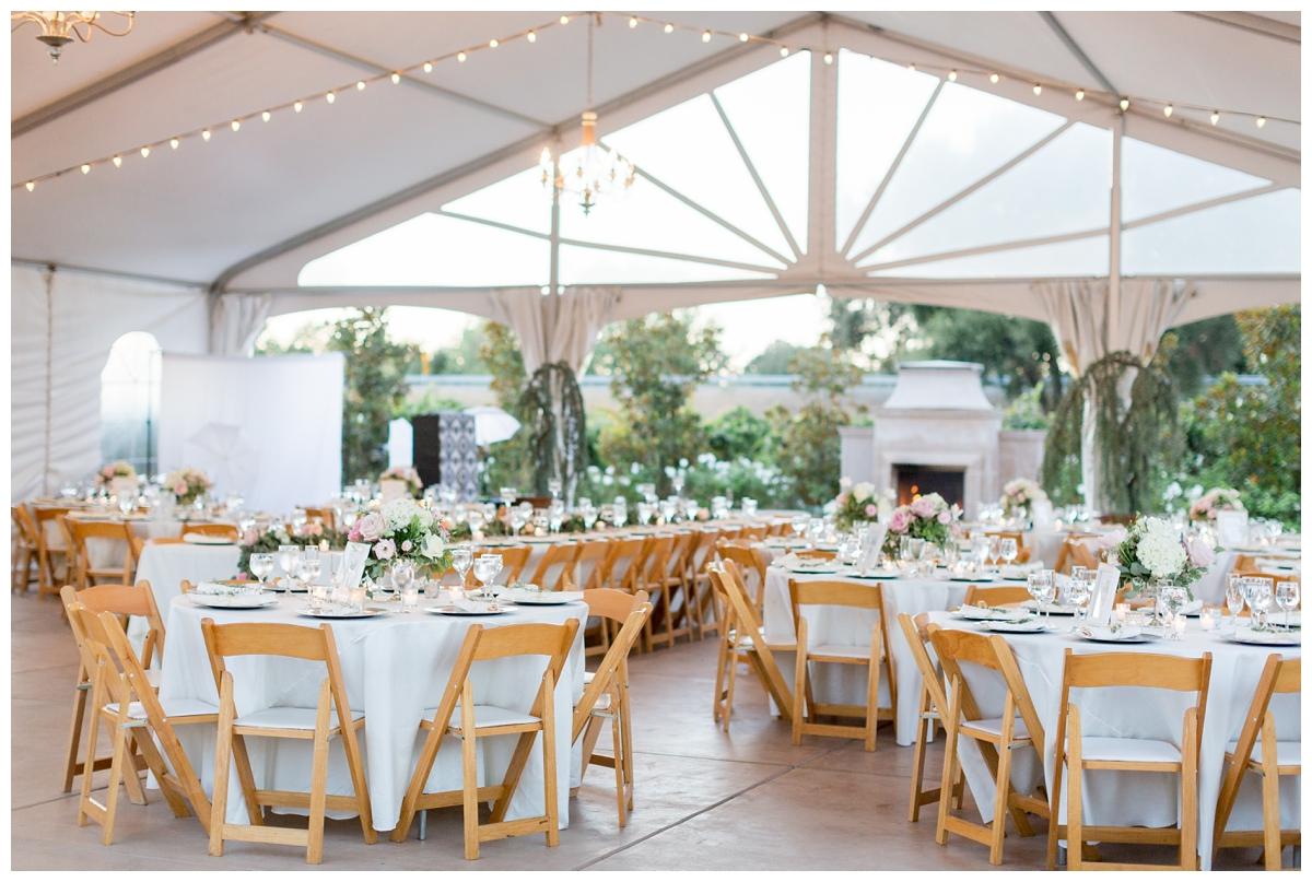 Scribner-Bend-Vineyards-Wedding-Photos-Sacramento-Wedding-Photographer-_2508.jpg