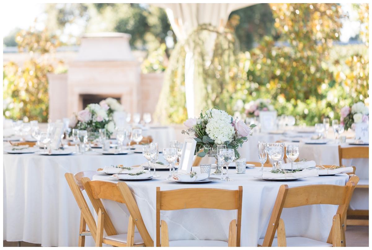Scribner-Bend-Vineyards-Wedding-Photos-Sacramento-Wedding-Photographer-_2516.jpg