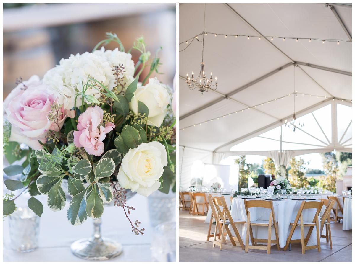 Scribner-Bend-Vineyards-Wedding-Photos-Sacramento-Wedding-Photographer-_2517.jpg