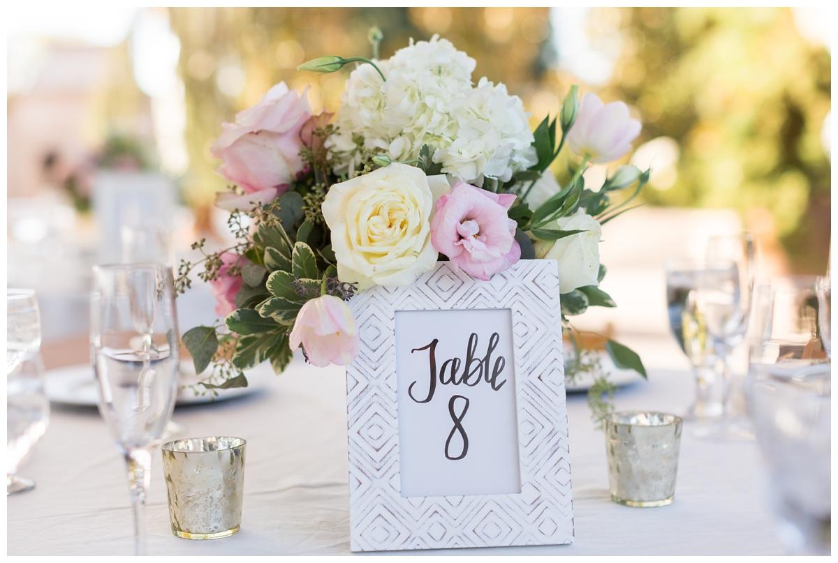 Scribner-Bend-Vineyards-Wedding-Photos-Sacramento-Wedding-Photographer-_2499.jpg
