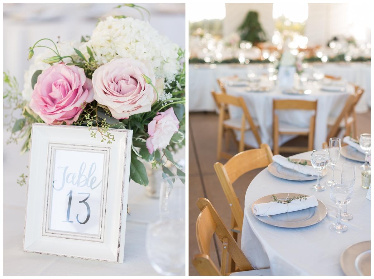 Scribner-Bend-Vineyards-Wedding-Photos-Sacramento-Wedding-Photographer-_2519.jpg