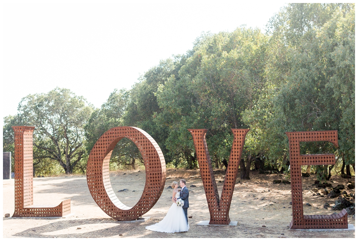Paradise-Ridge-Winery-Wedding-Photography-DannyNicole_2103.jpg