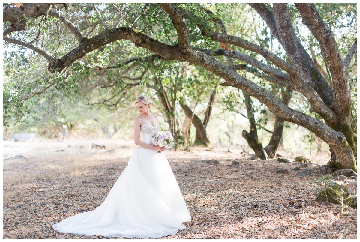 Paradise-Ridge-Winery-Wedding-Photography-DannyNicole_2112.jpg