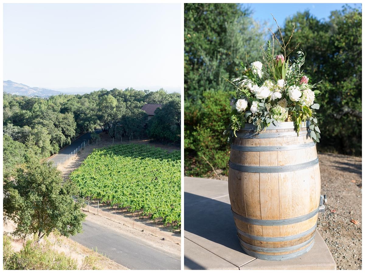 Paradise-Ridge-Winery-Wedding-Photography-DannyNicole_2137.jpg