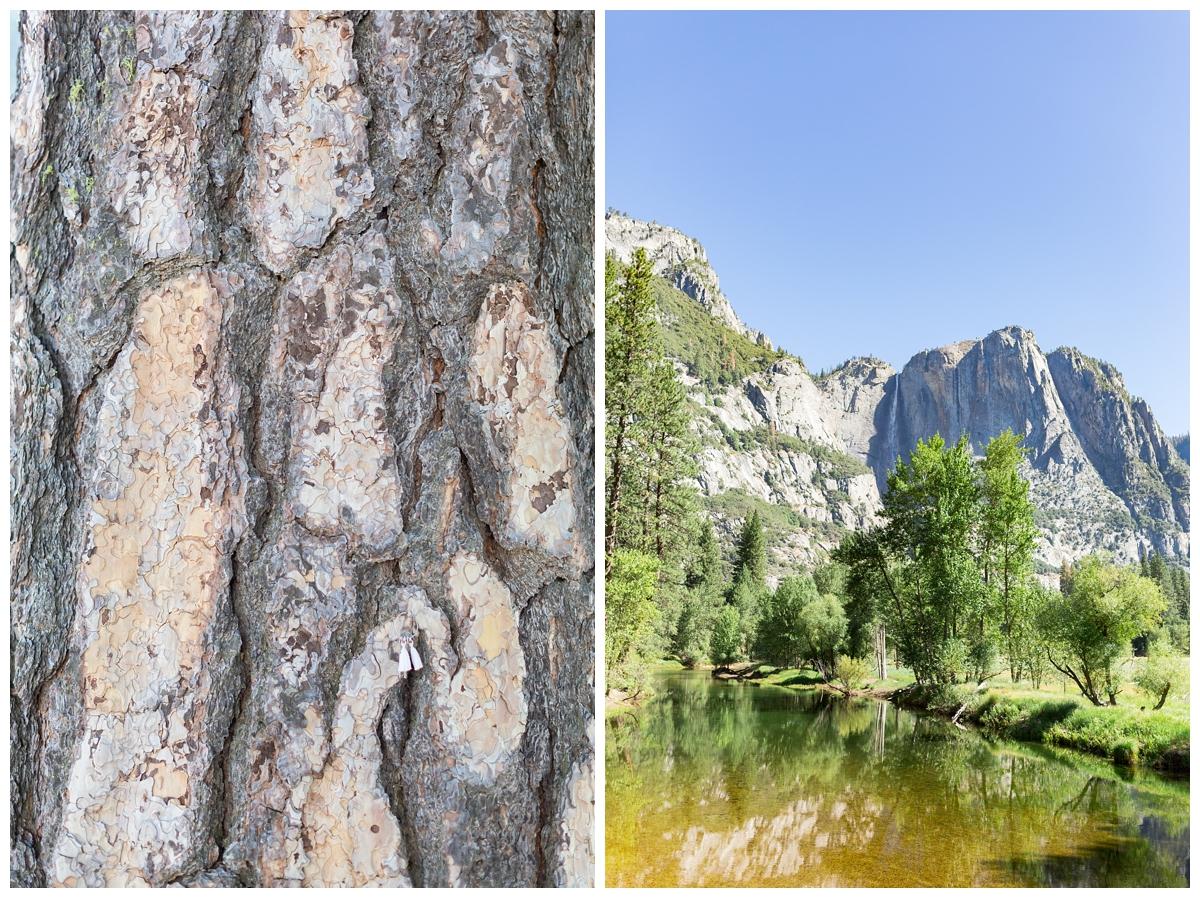 Yosemite-National-Park-Portrait-Photographer_0744.jpg