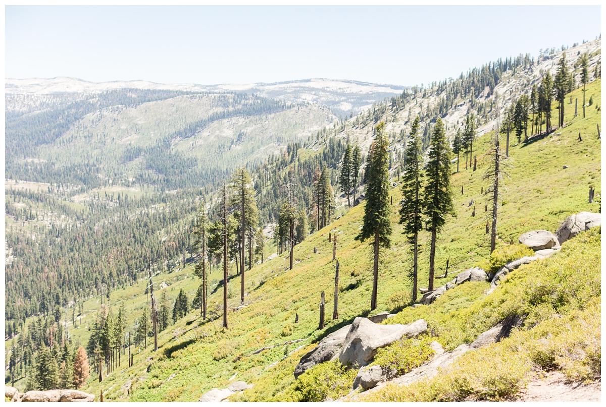 Yosemite-National-Park-Portrait-Photographer_0763.jpg