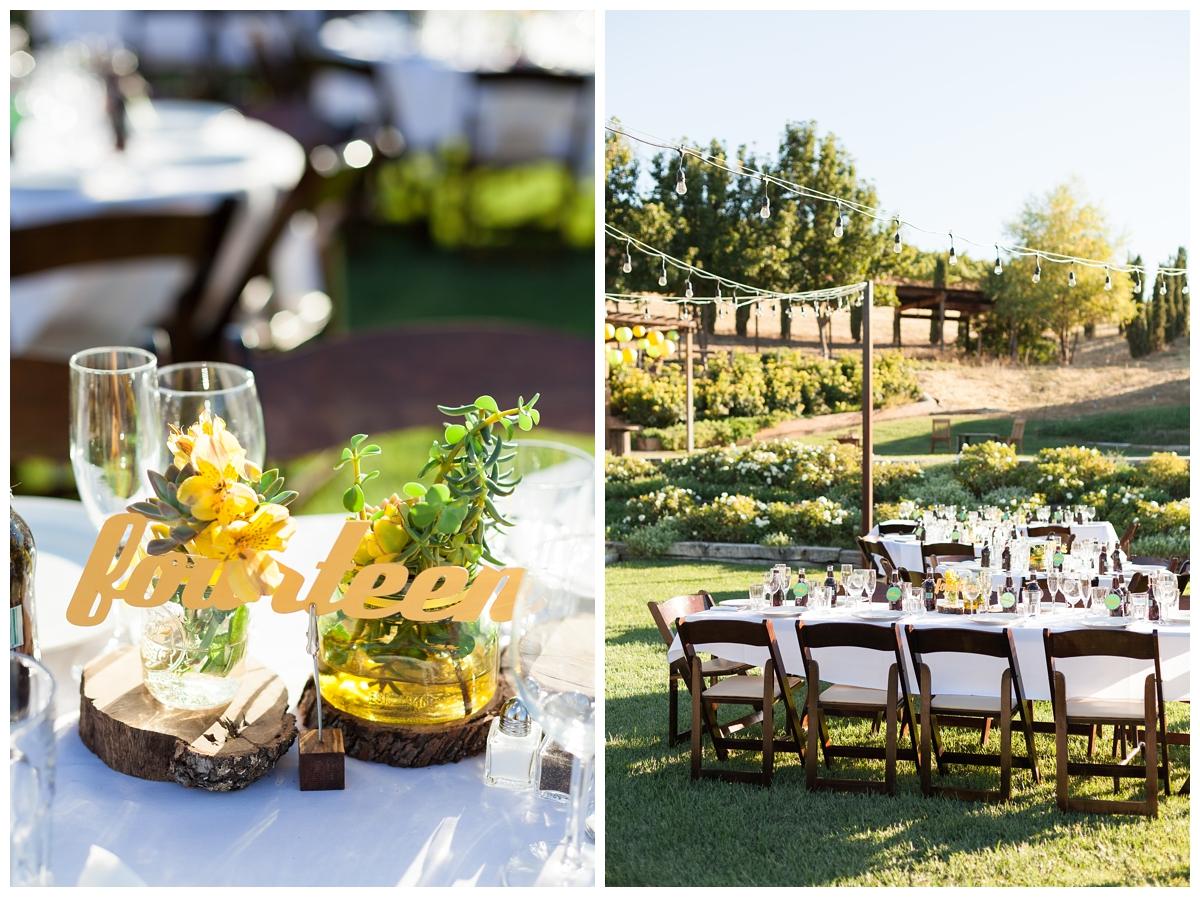Taber-Ranch-Wedding-Capay-California-Photographer_1525.jpg