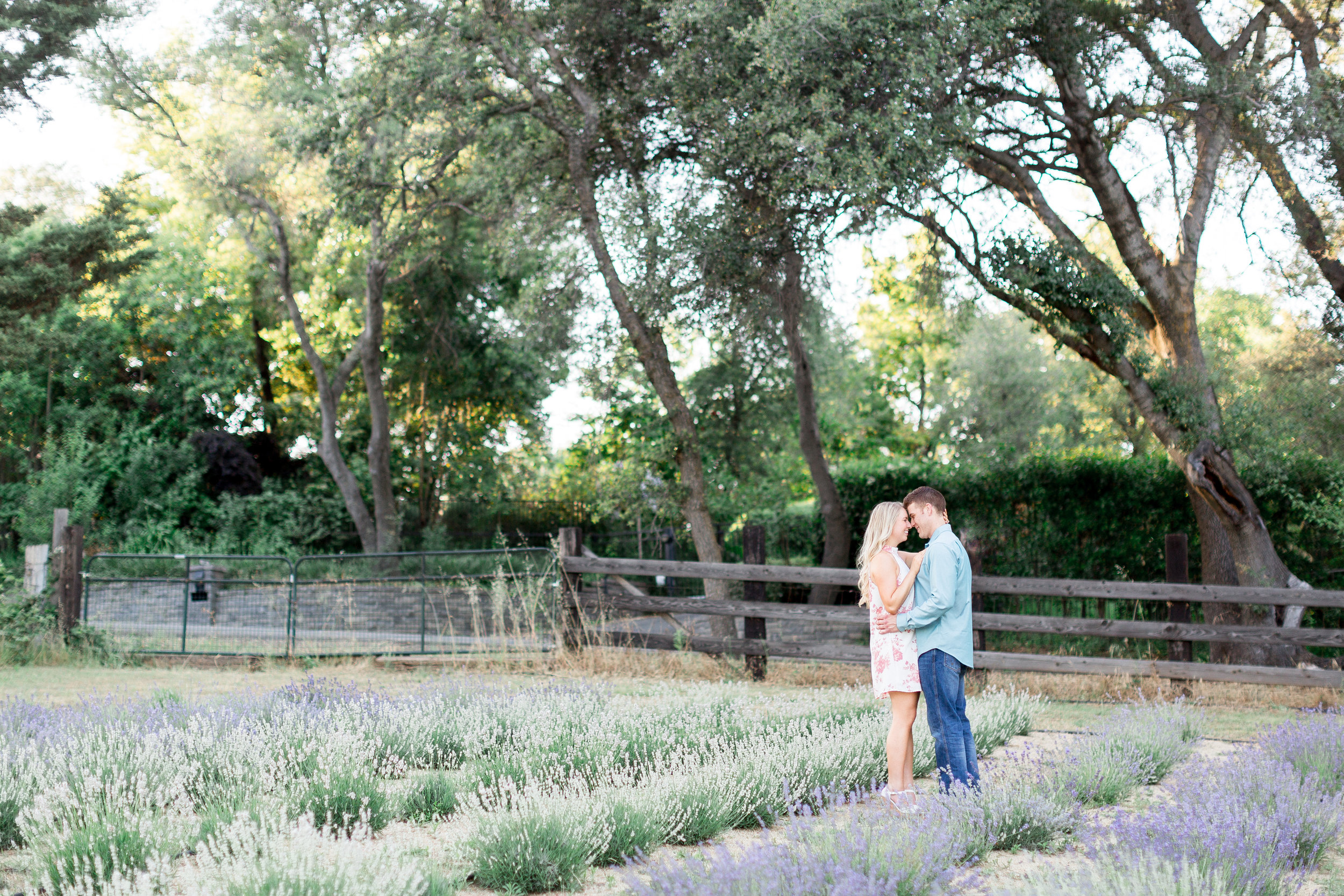 creative-bywater-hollow-lavender-farm-engagement-sunset-photos
