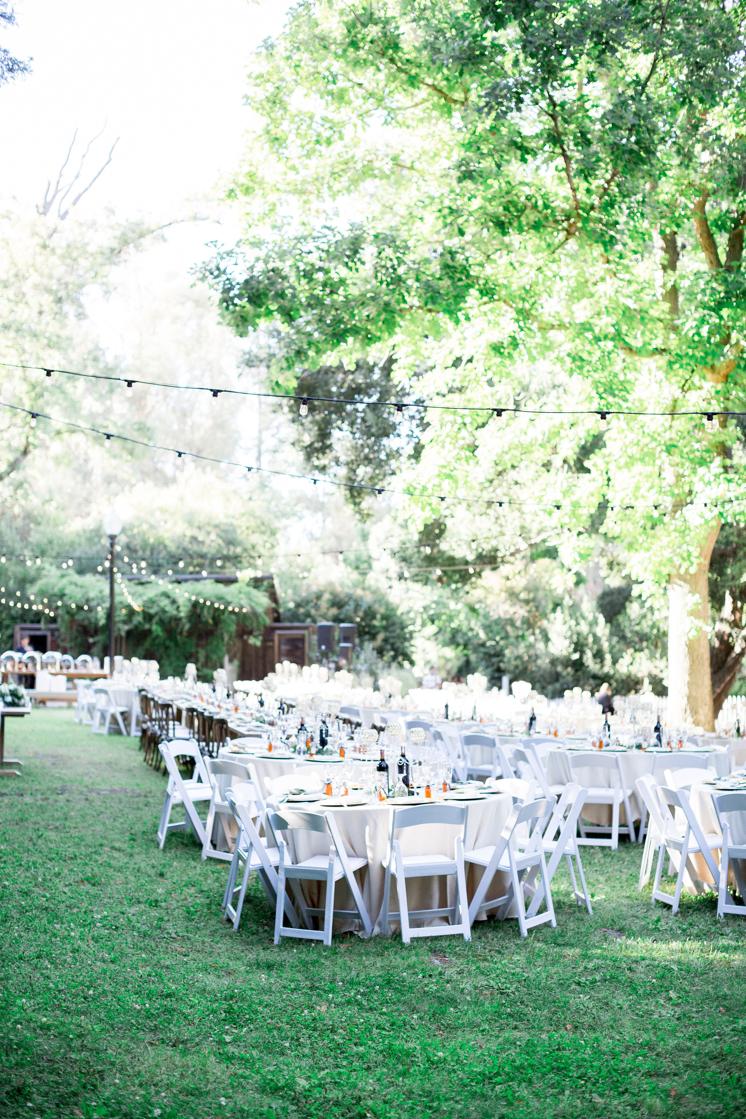 wedding-reception-space-inspiration-photos (239 of 302).jpg