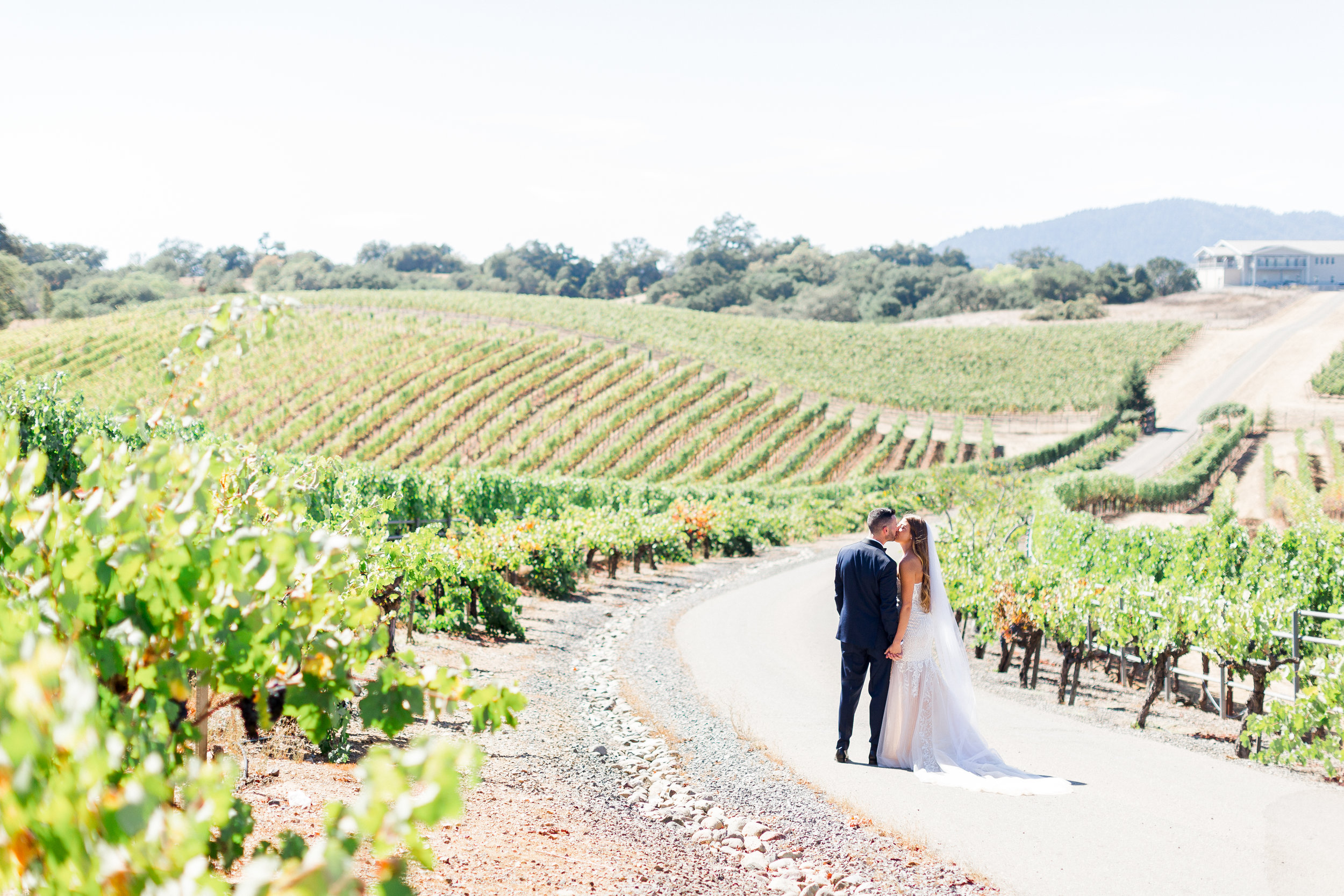 Calegari-Vineyard-Healdsburg-Wedding-Photographer-2.jpg