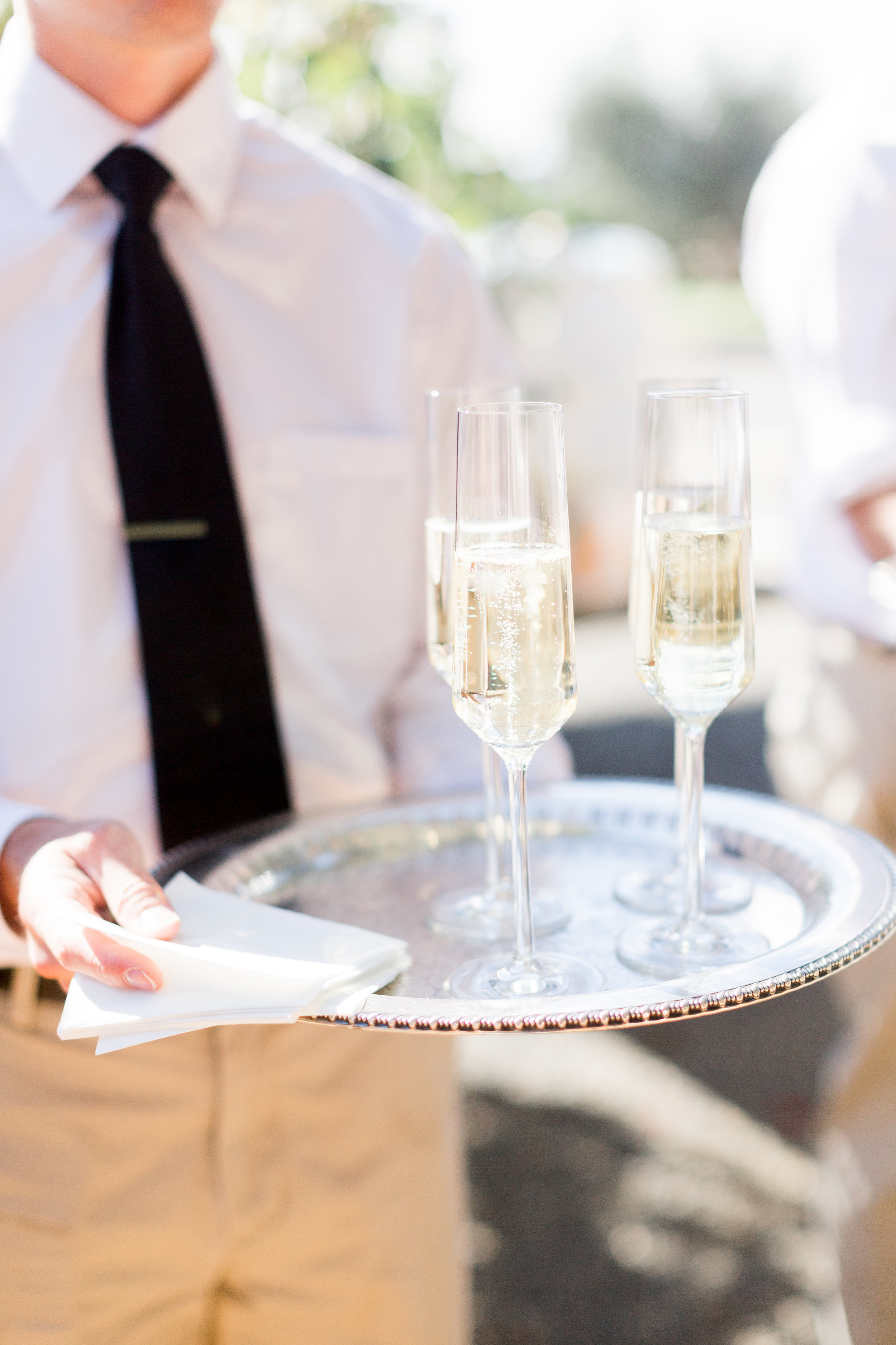 Calegari-Vineyards-Healdsburg-Wedding-Photographer (149 of 262).jpg