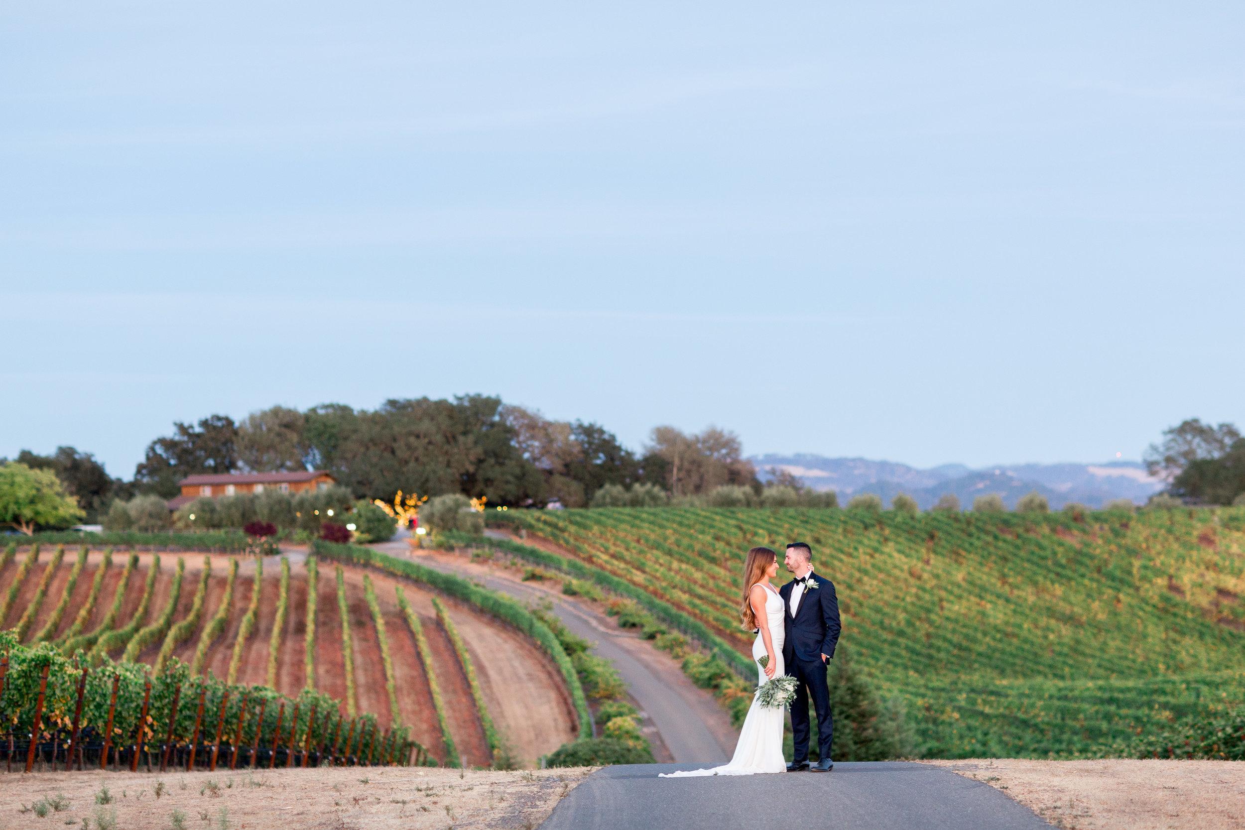 Calegari-Vineyards-Healdsburg-Wedding-Photographer (245 of 262).jpg