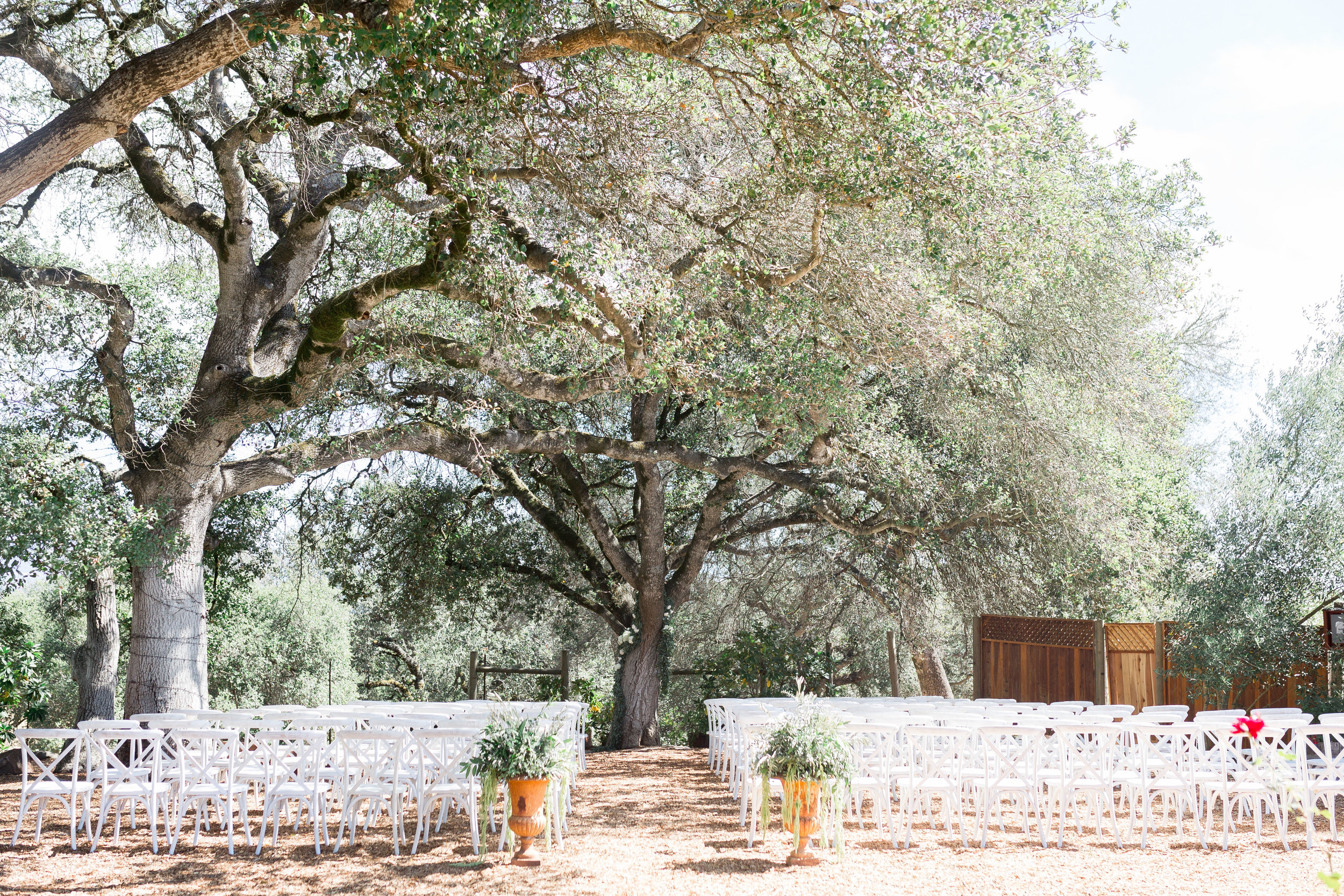 outdoor-ceremony-location-Napa-county-wine-country(21 of 262).jpg