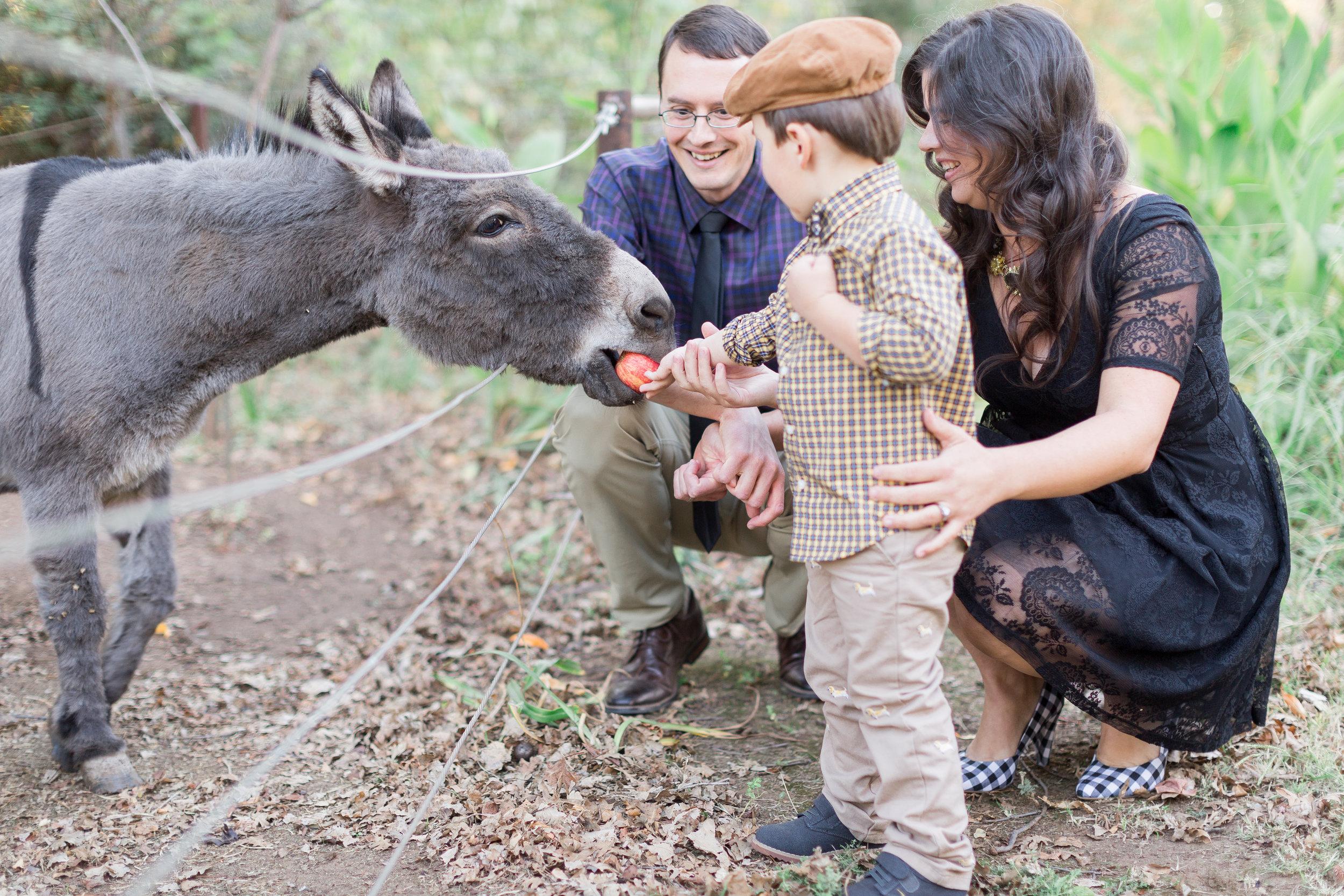 225White-Ranch-Family-photographer (63 of).jpg