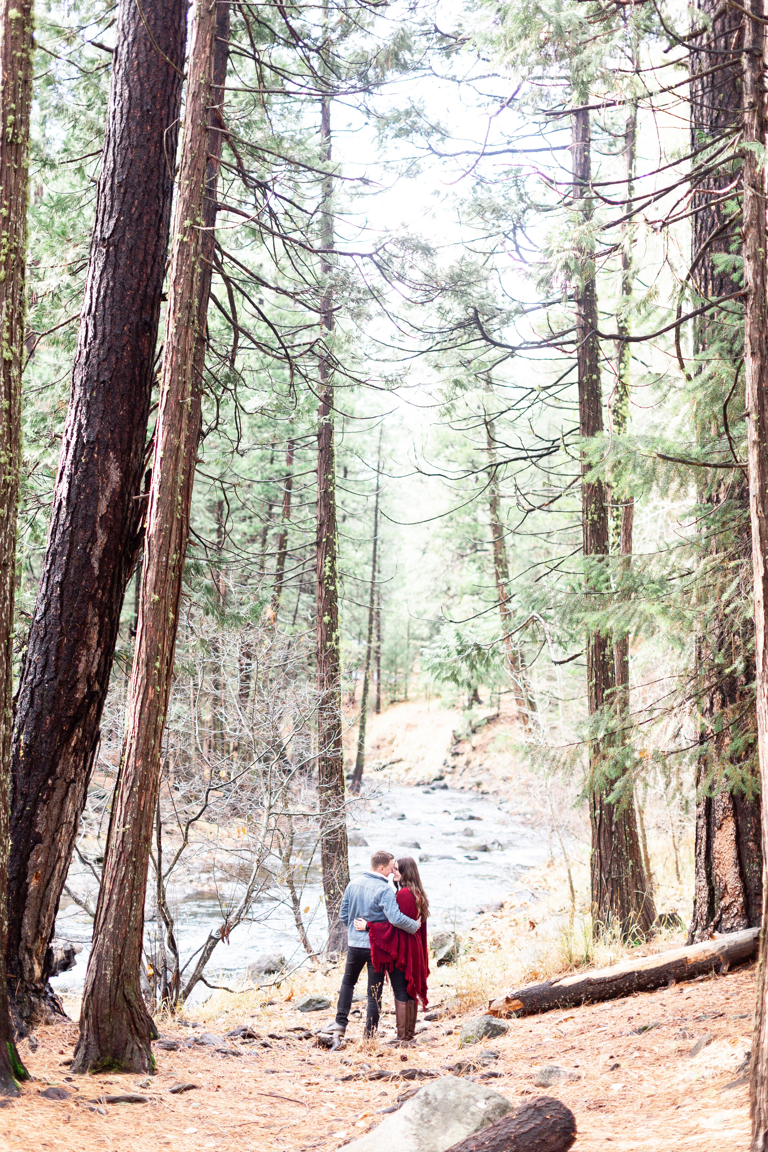 Chico-wedding-photographer-travels-for-photos-in-woods (33 of 83).jpg
