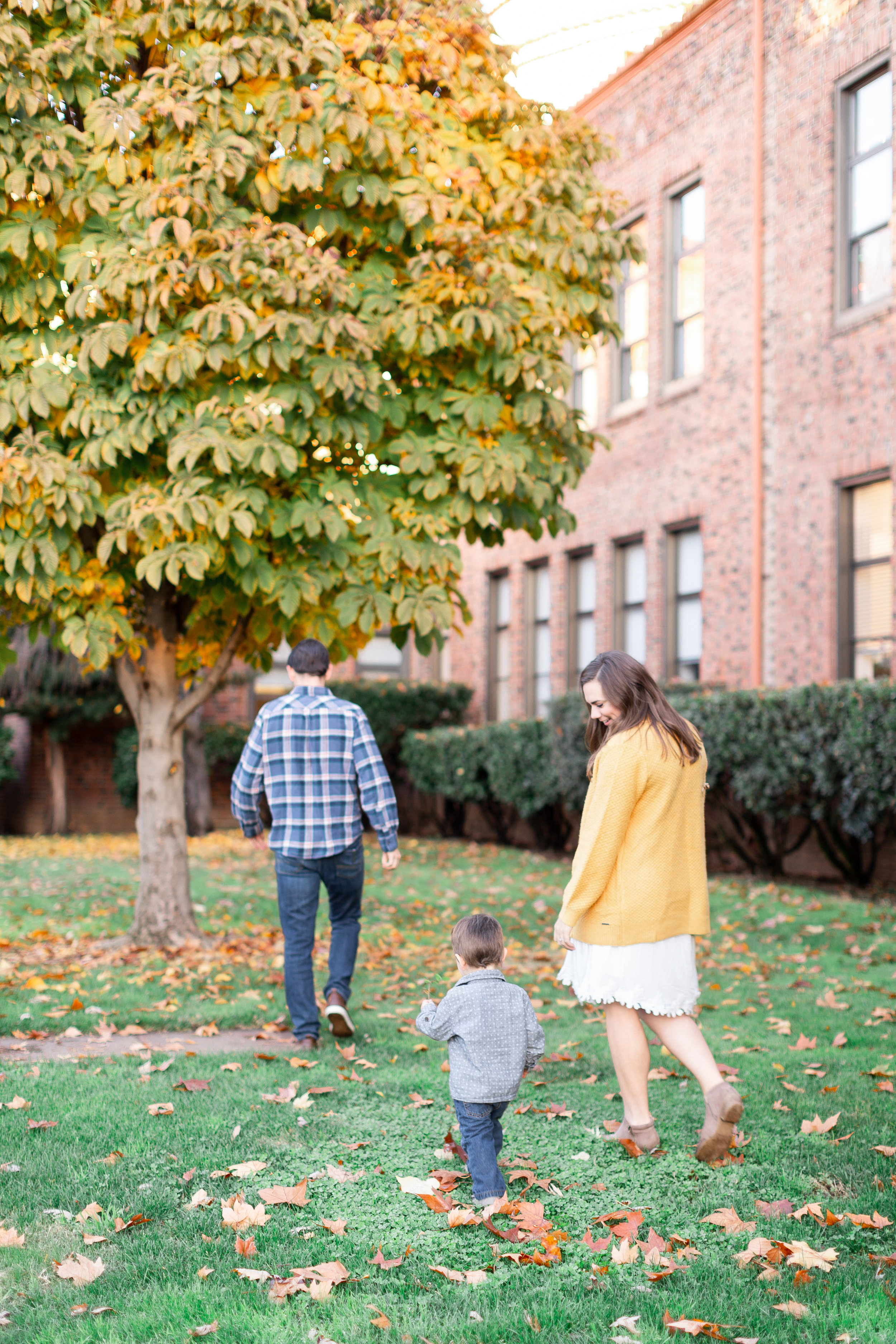 168Chico-State-Fall-Family-Photos (73 of).jpg