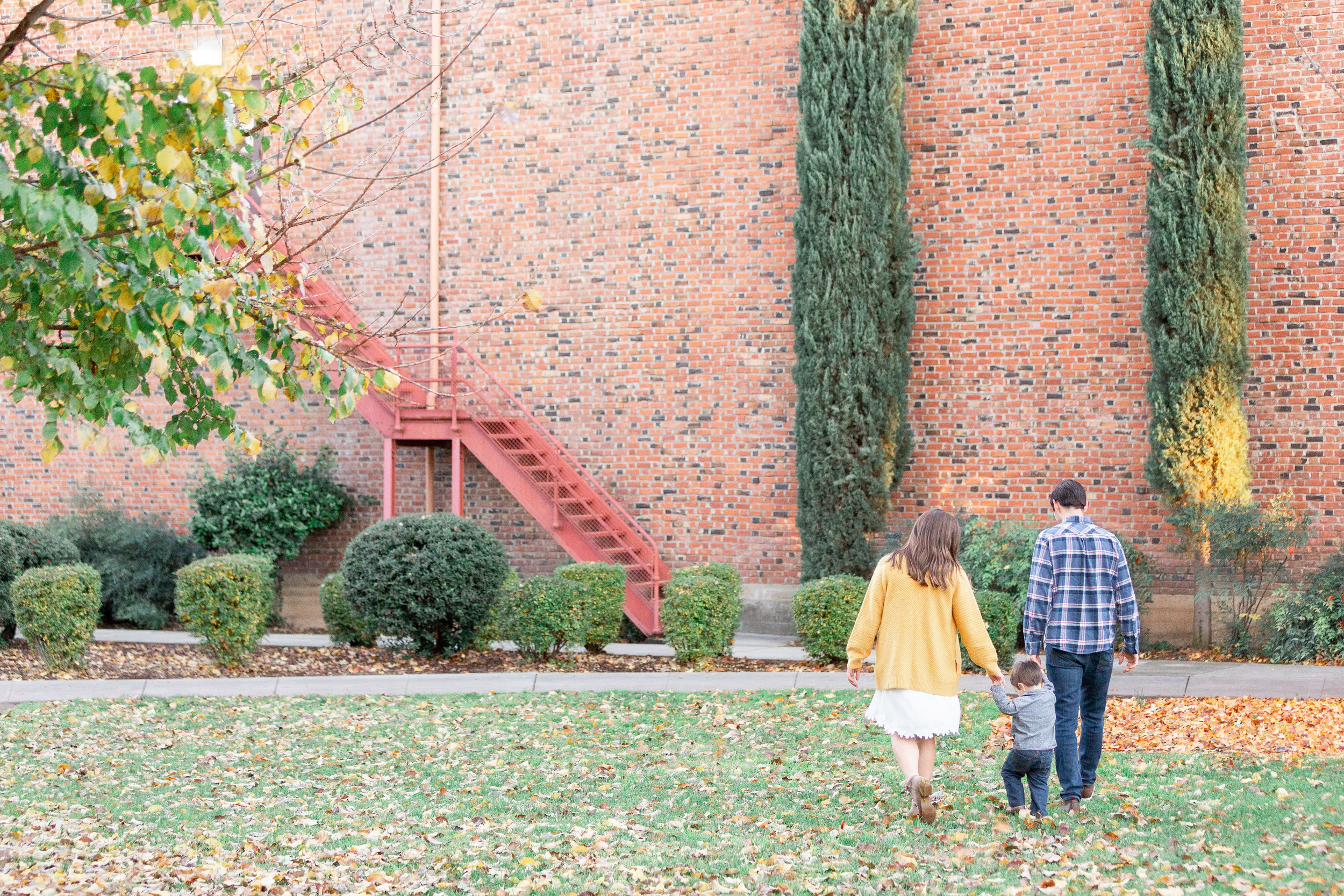 Chico-State-Fall-Family-Photos (33 of 58).jpg