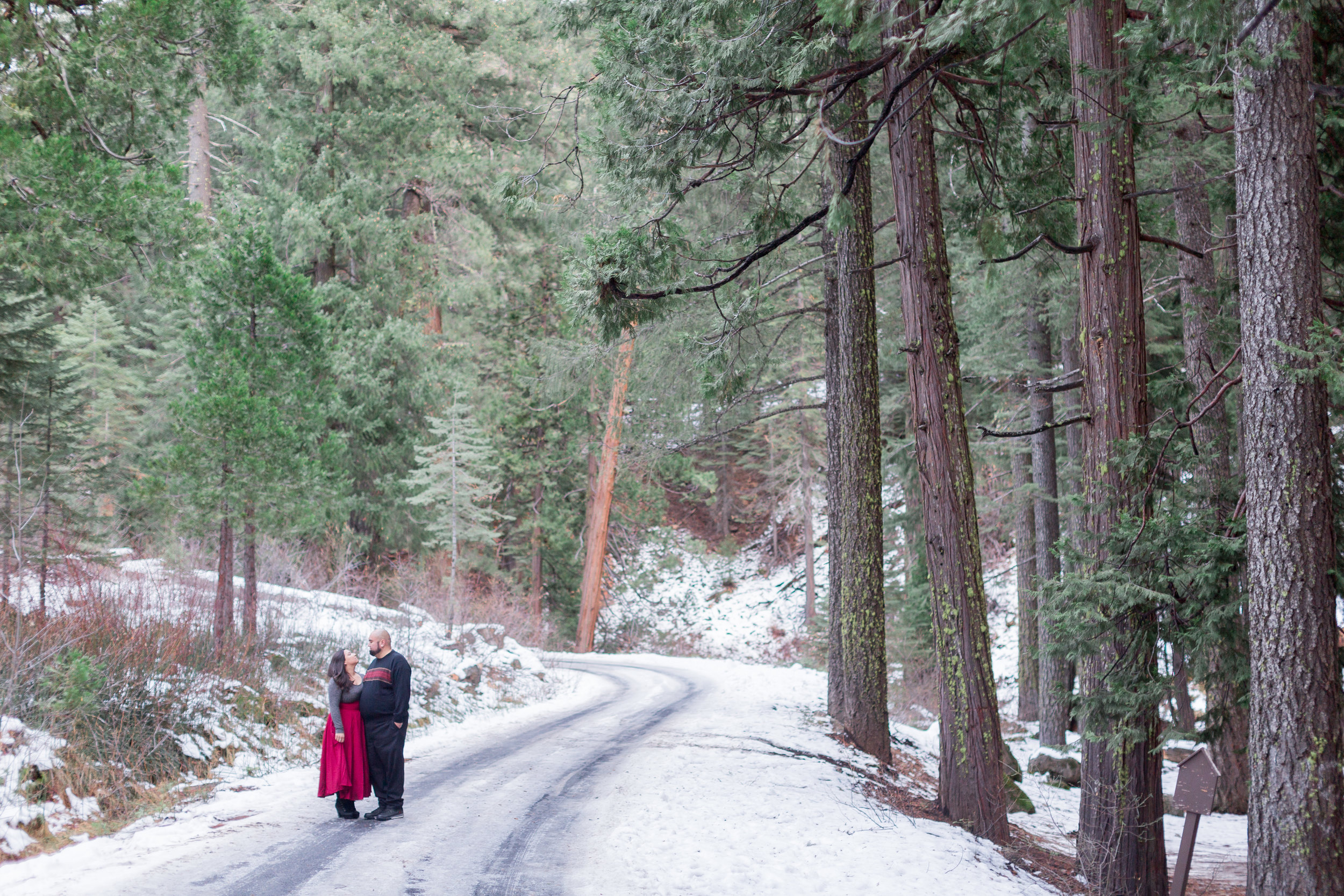 Northern-California-Mountain-Engagement-Photos-Chico-Photographer (123 of 142).jpg