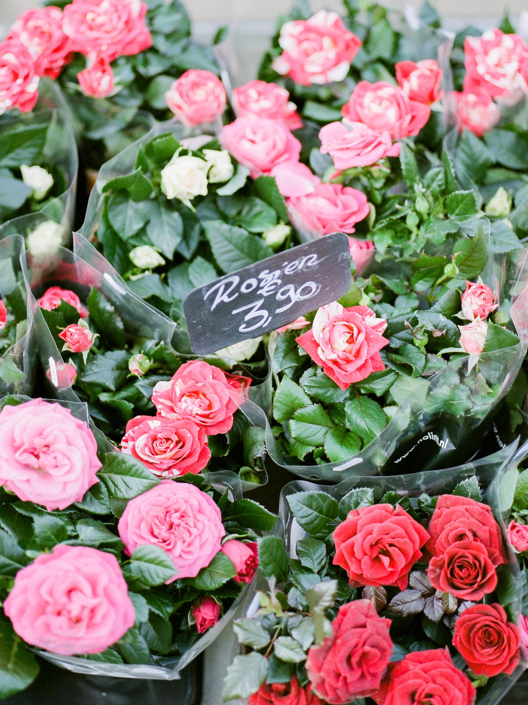 fresh-flowers-in-market-during-the-winter-in-paris.jpg