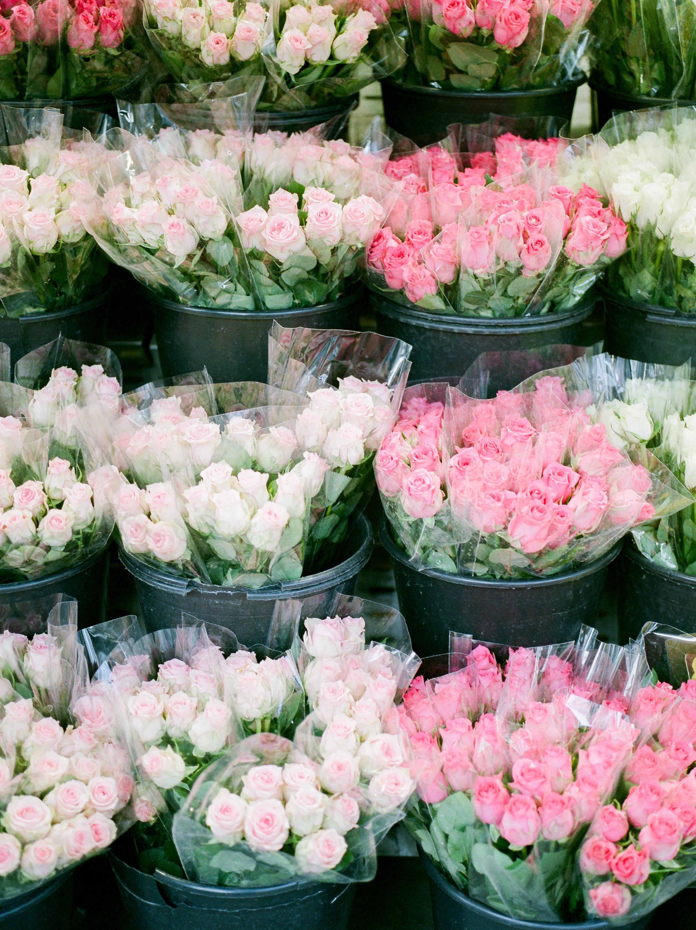 fresh-roses-in-paris-market.jpg