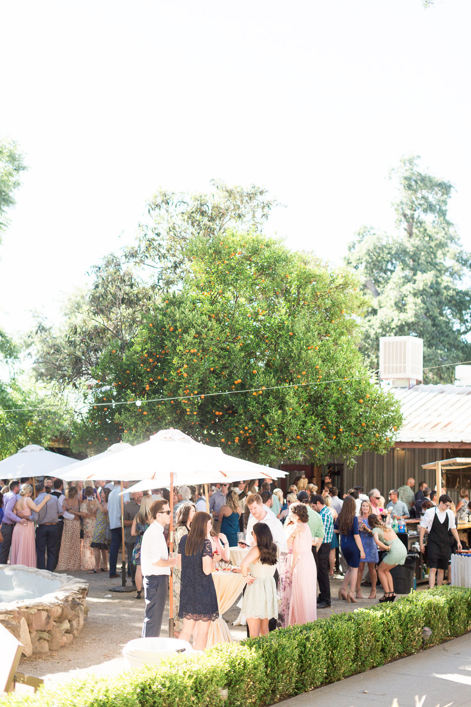 outdoor-cocktail-hour-patrick-ranch-museum.jpg