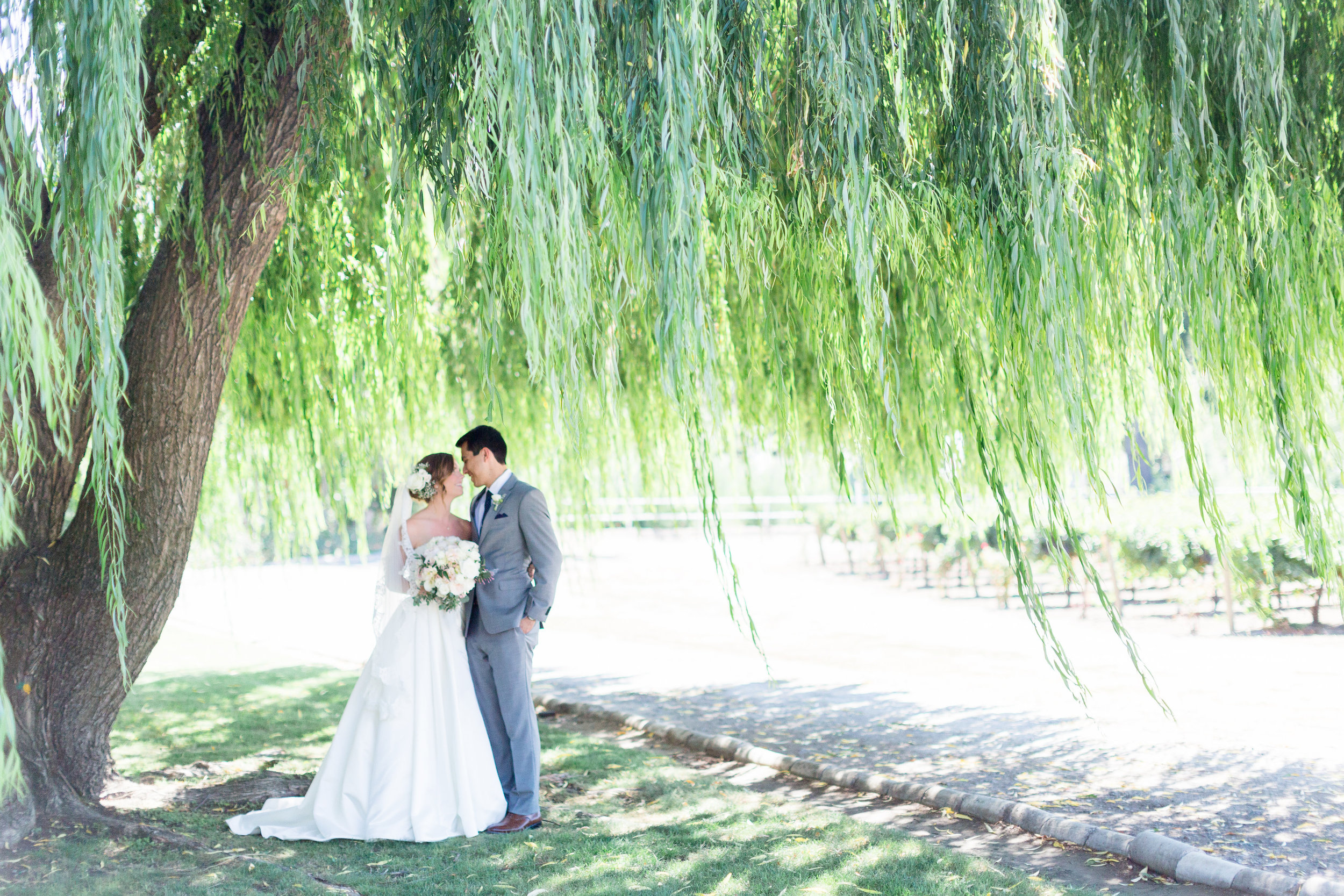 Wilson-Vineyard-Clarksburg-California-Wedding-Photos.jpg