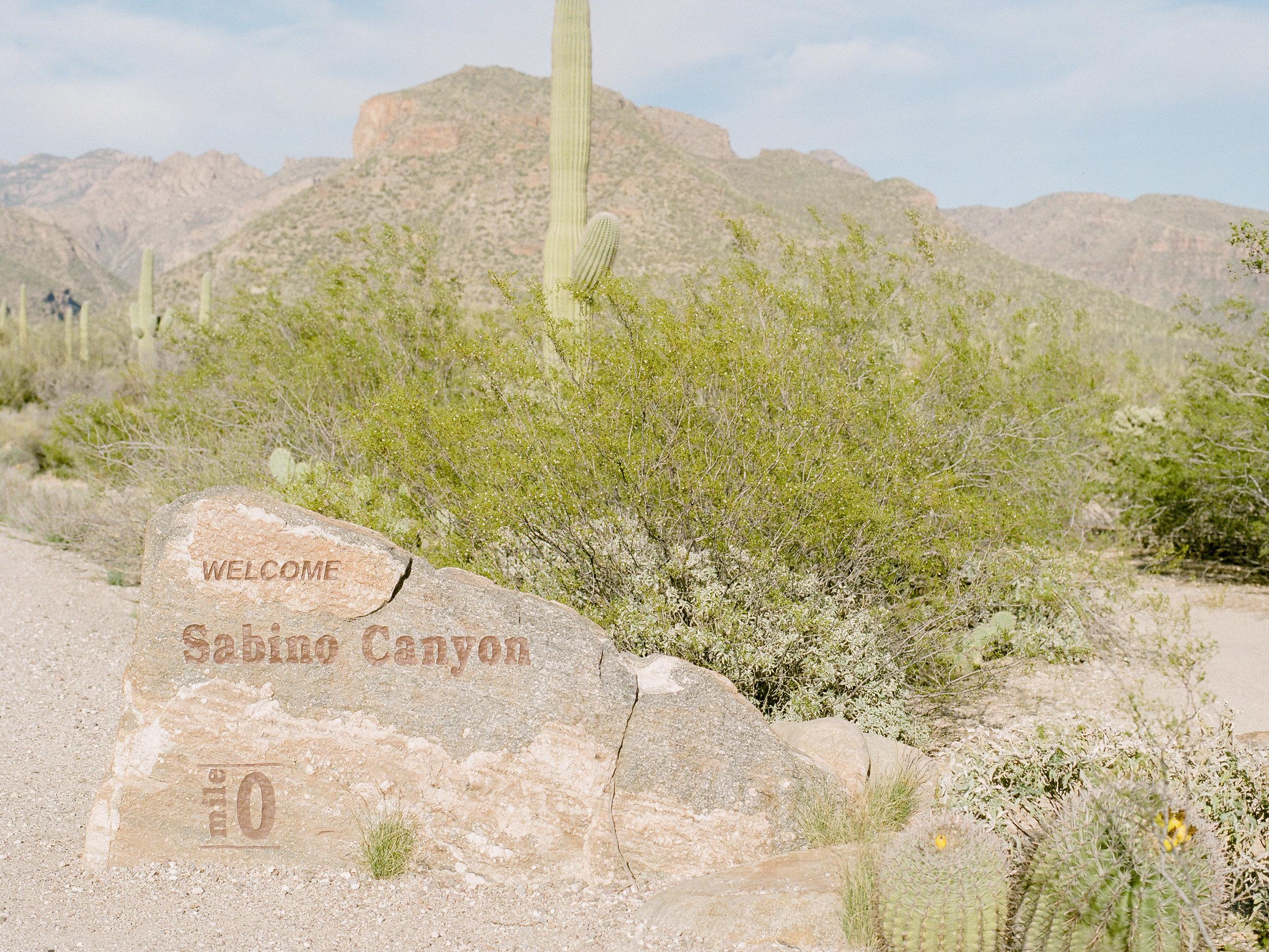 tuscon-arizona-travel-photographer.jpg
