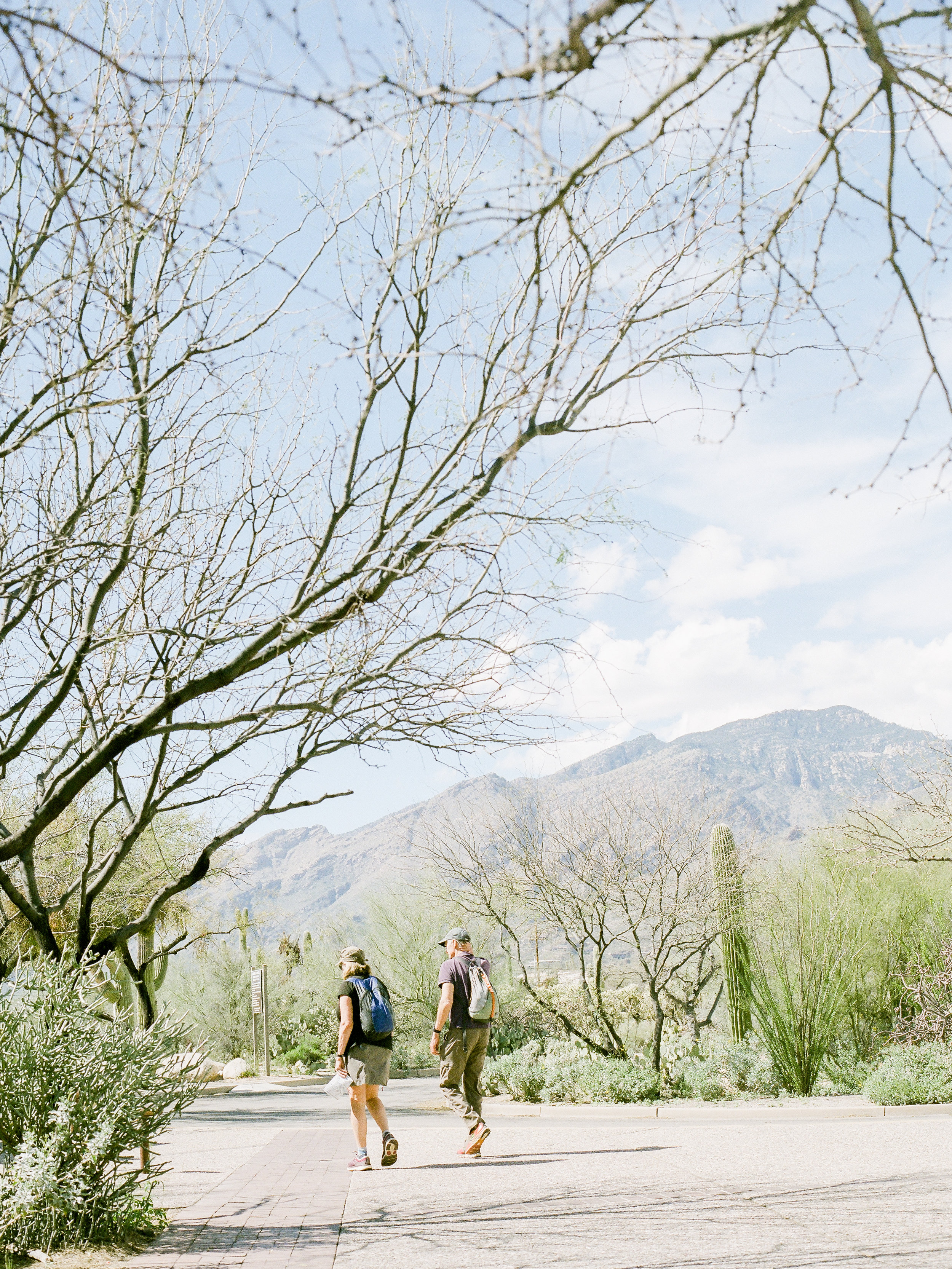 destination-california-photographer-travels-to-arizona.jpg