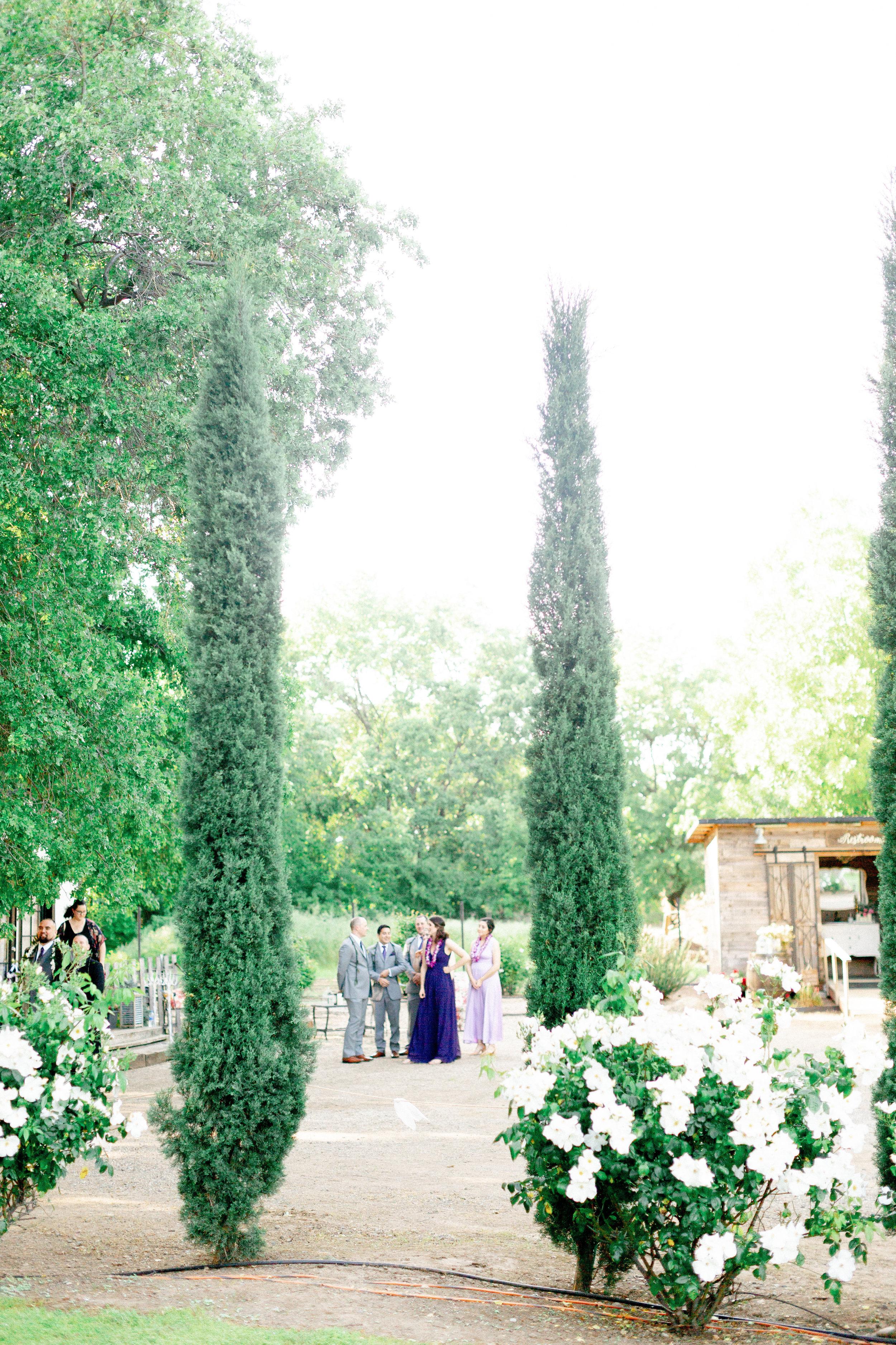 121Balla-Rosa-Farm-wedding-photos (45 of).jpg