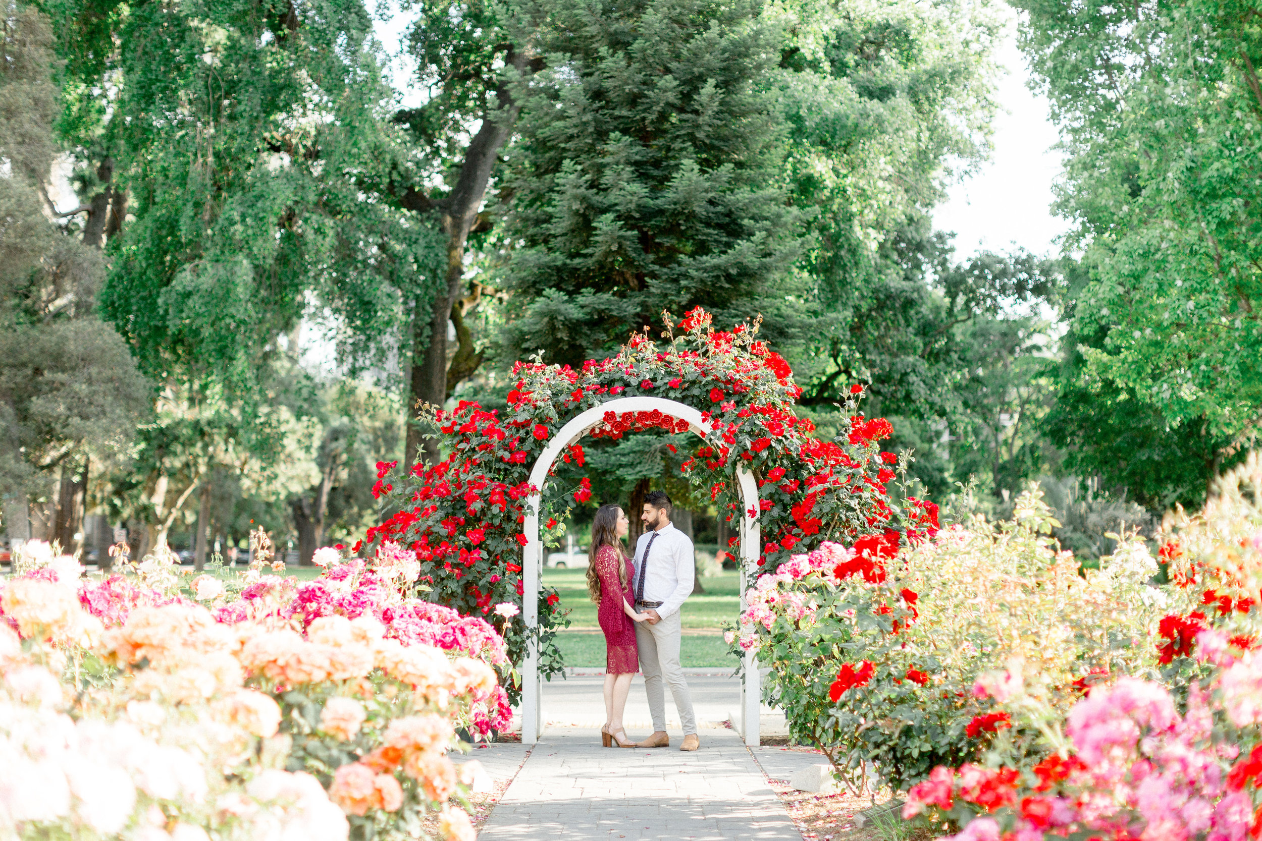 Sacramento-rose-garden-capitol-park-engagement-photos.jpg