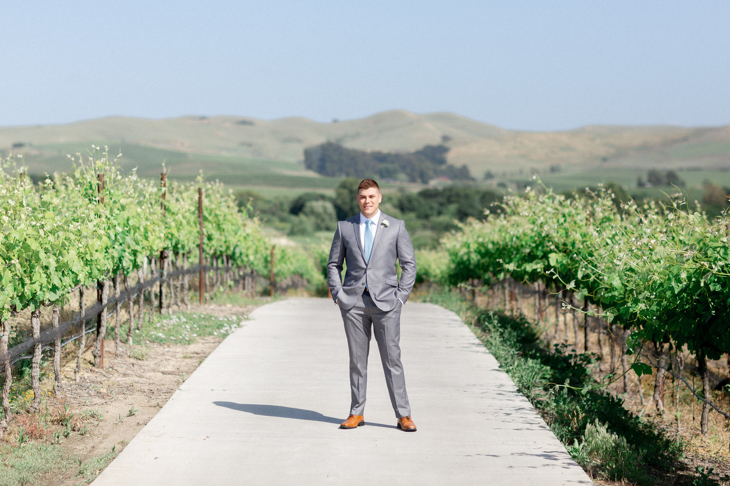 napa-destination-wedding-photographer-captures-groom-portraits-in-vineyards.jpg