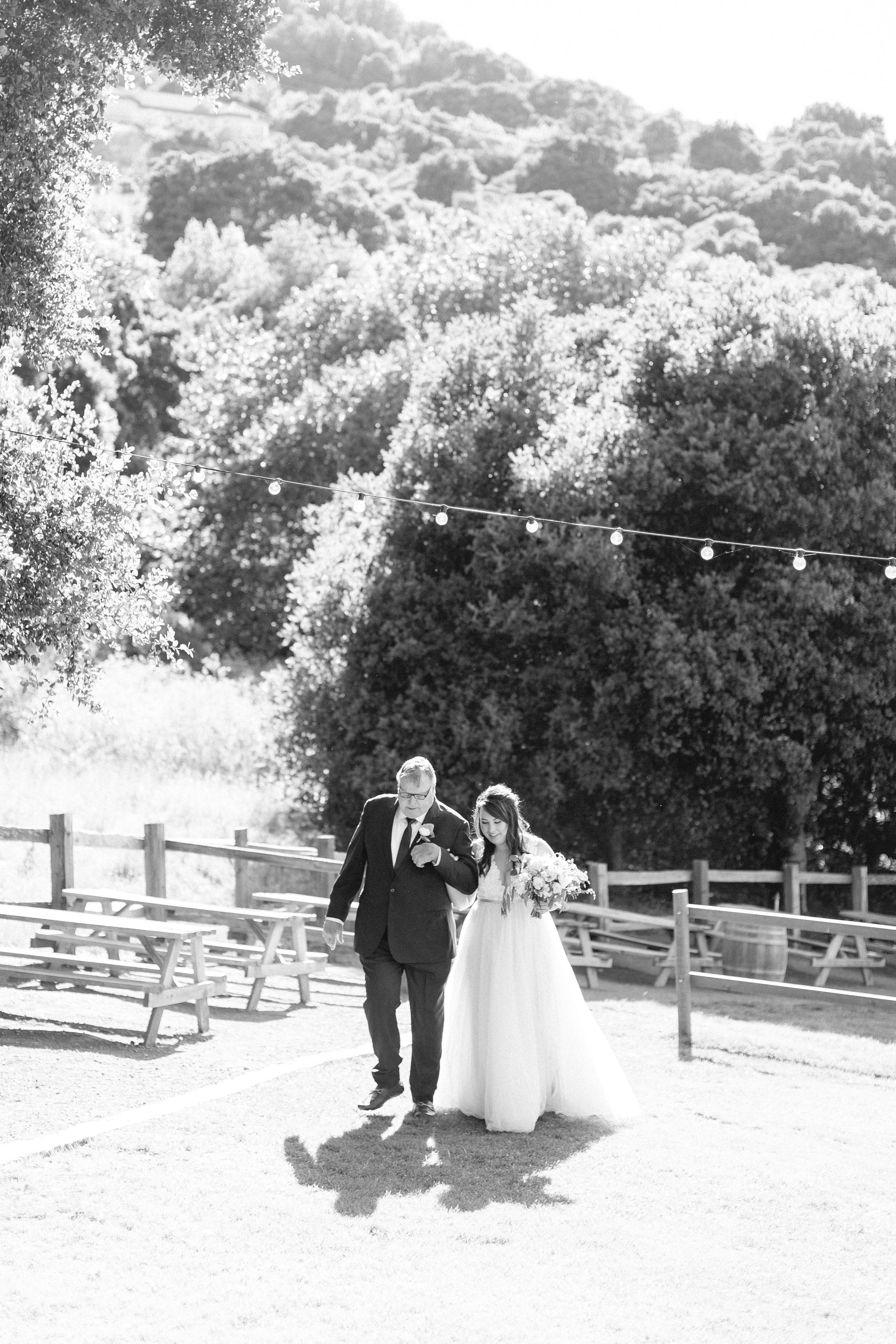 Picchetti-Winery-wedding-photos (94 of 145).jpg