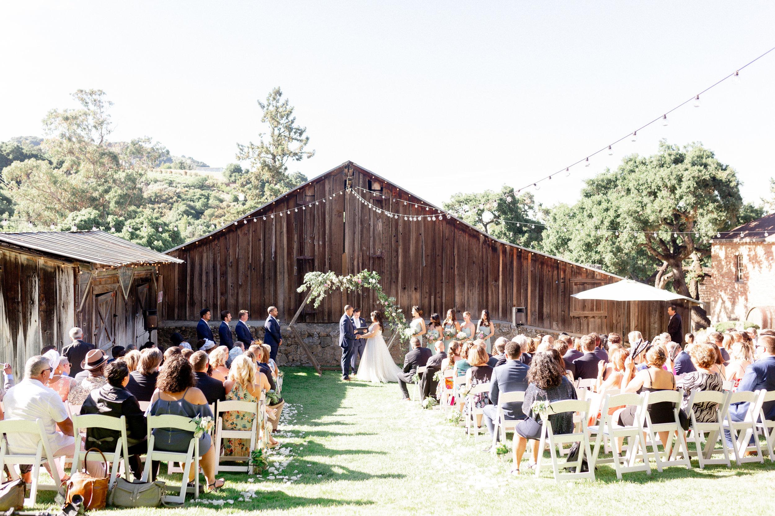 Picchetti-Winery-wedding-photos (1 of 3).jpg